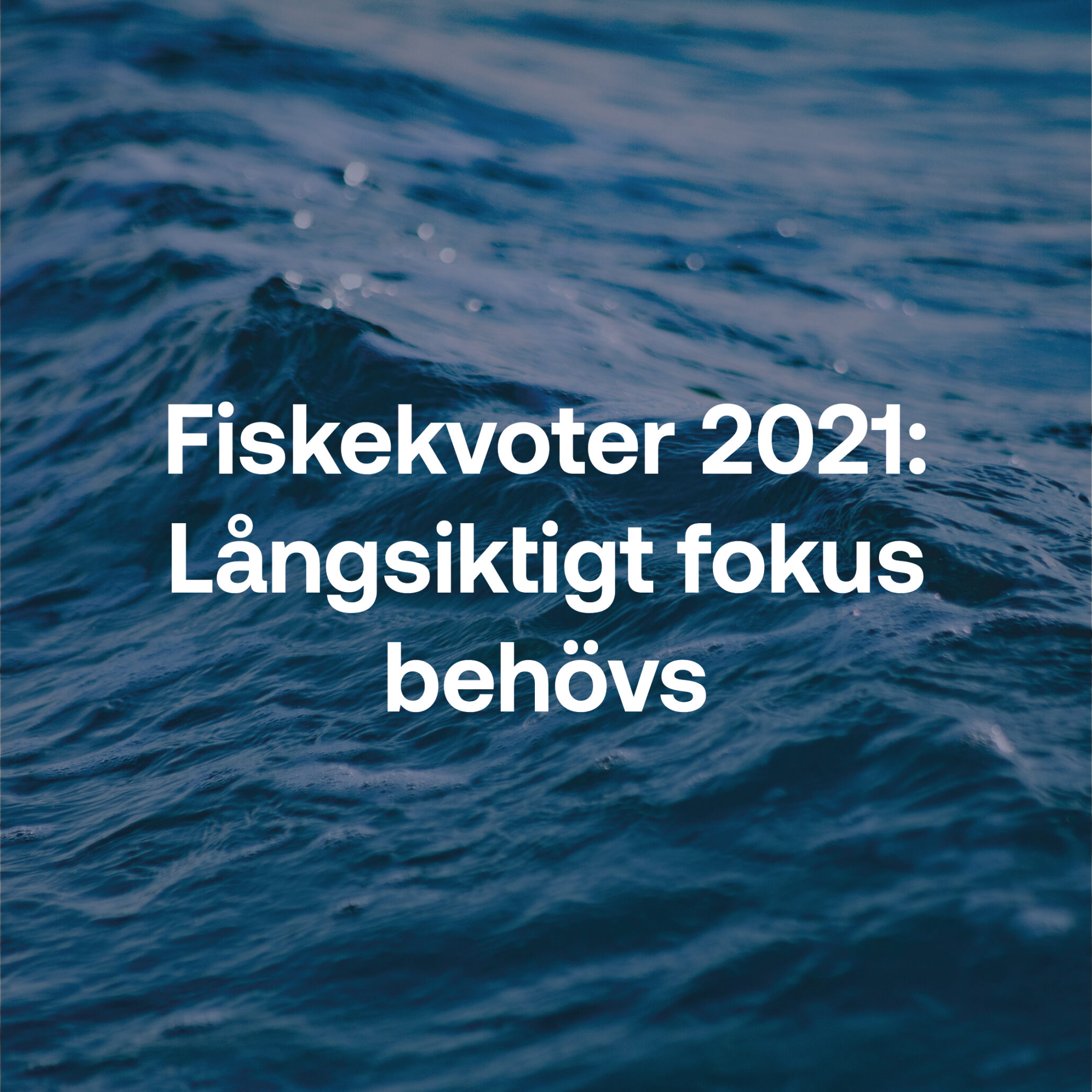 Fiskebrief 24