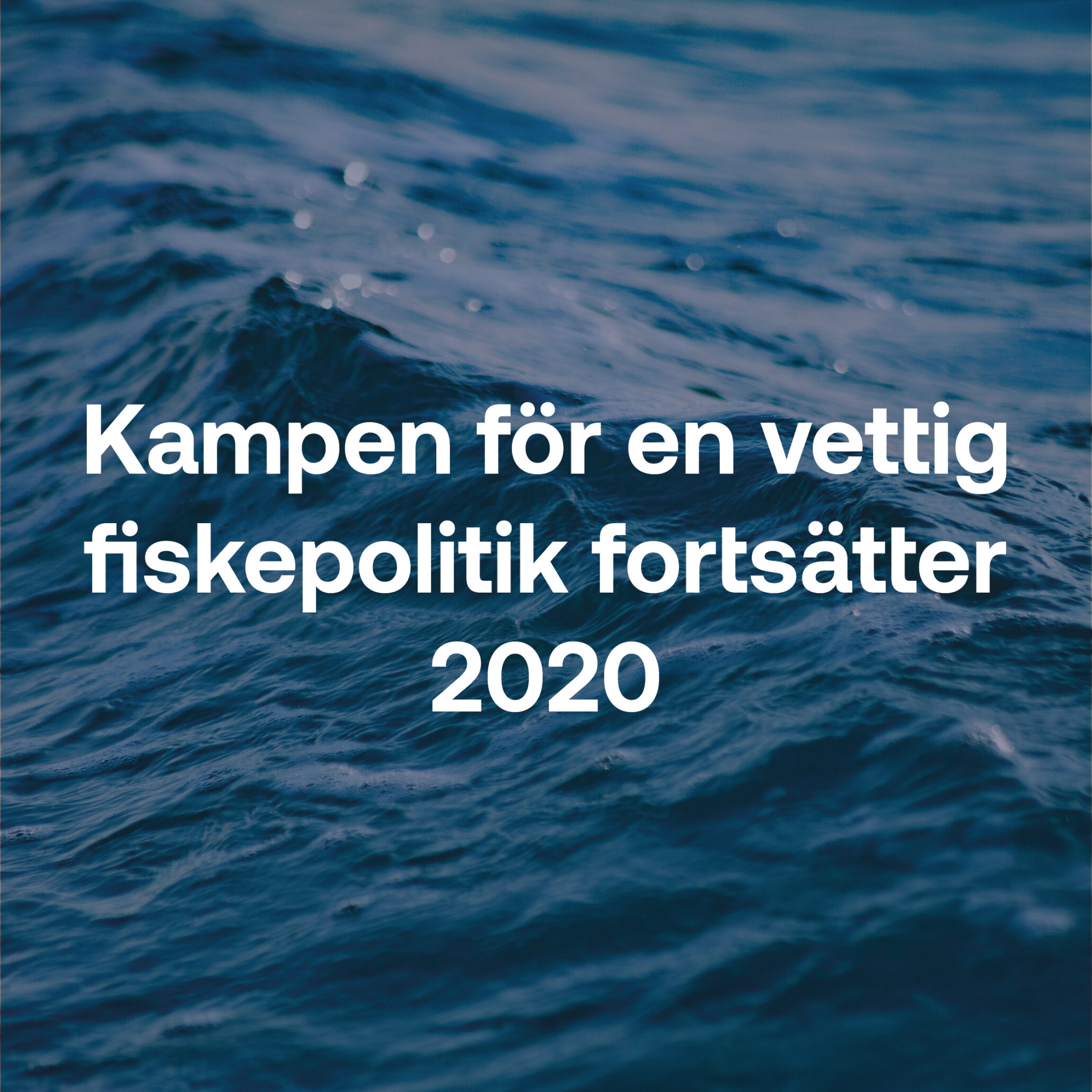 Fiskebrief 22