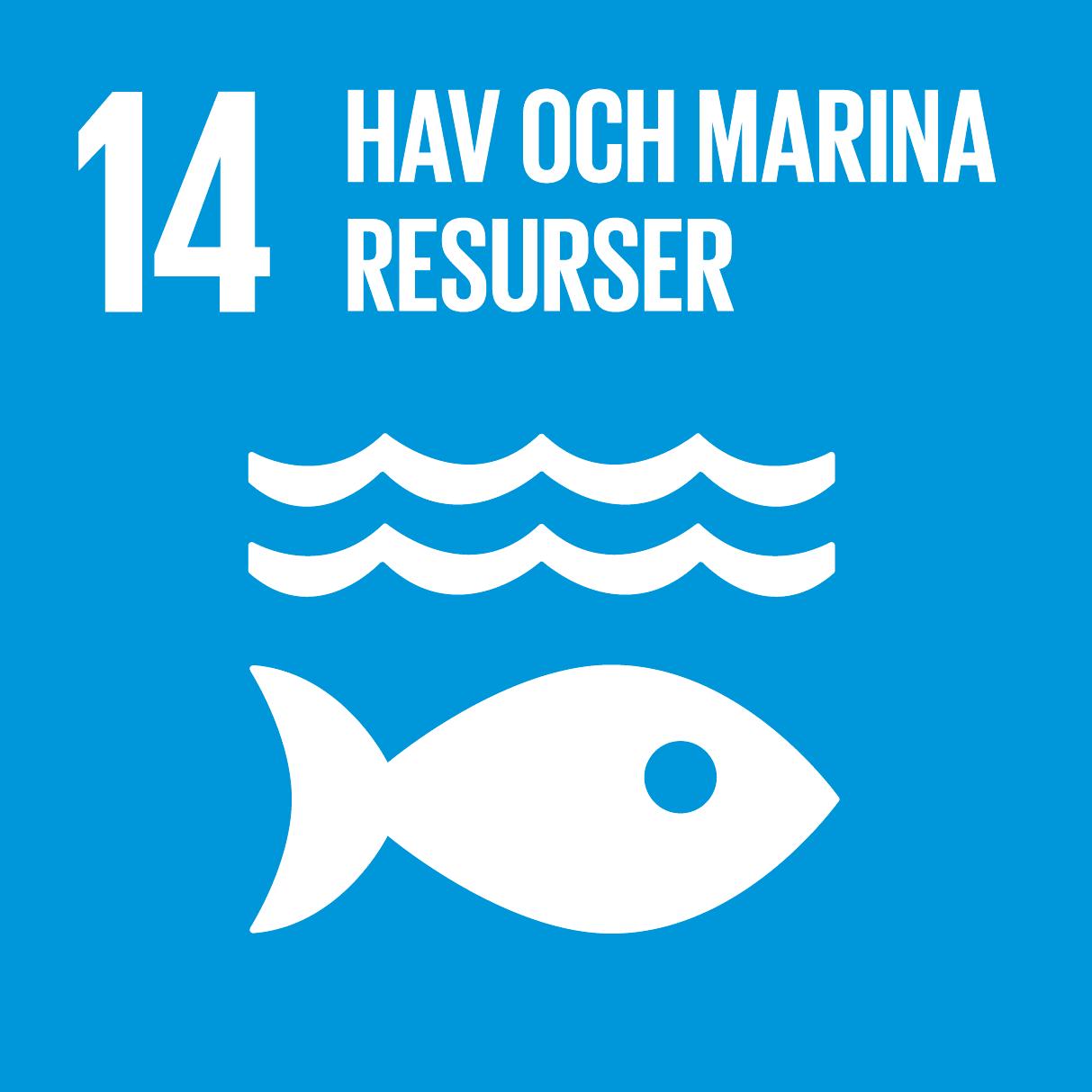 14_hav_och_marina_resurser